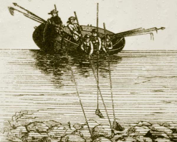 Добыча янтаря с лодки